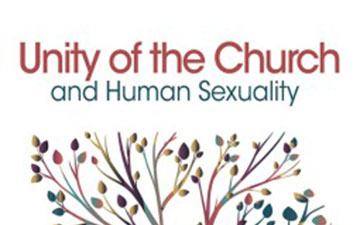 Review of GBHEM'S Unity of the Church and Human Sexuality