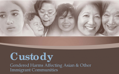 Custody: Gendered Harms Affecting Asian & Other Immigrant Communities, 2012