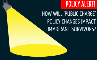 How Will the 'Public Charge' Final Rule Impact Immigrant Survivors? Updated Advisory & Informational Webinar