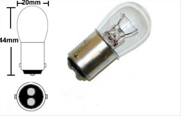 Individual bulb. 1004