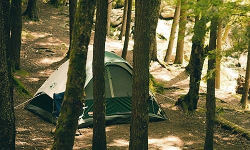 dan savage campsite rule