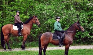 Two Horseback Riders