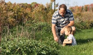 Man and Child Discovering Nature in Field