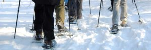 Snowshoers in The West Woods Geauga Park