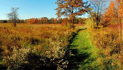 Eldon Russell Park Trails