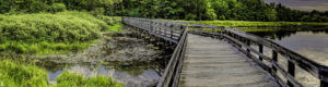 Wooden Bridge Over Water at Beartown Lakes Reservation