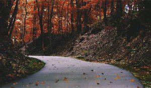 Paved Walking Trail