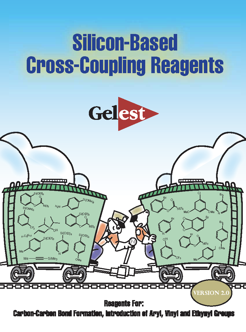 Silicon-Based Cross-Coupling Reagents
