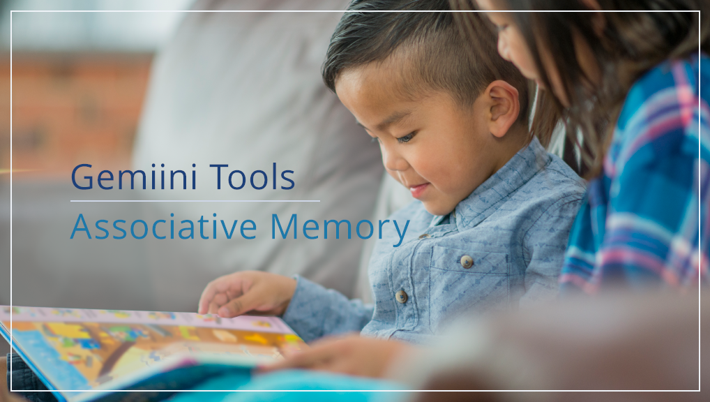 Gemiini's Associative Memory Tool
