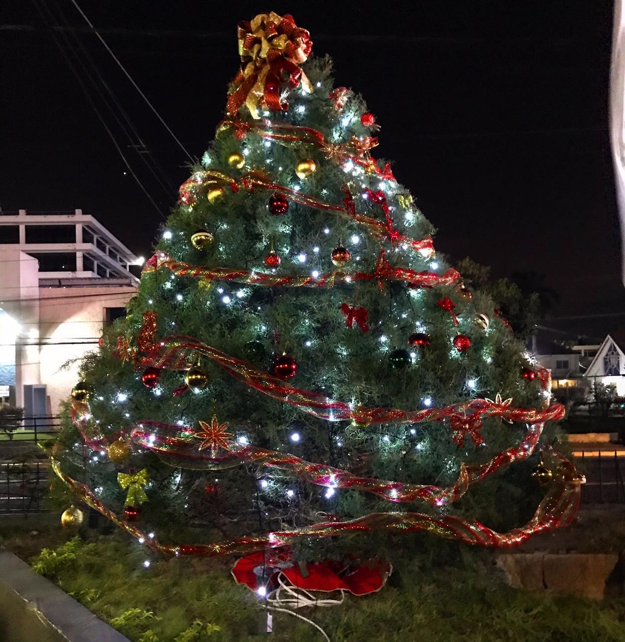 GenAc Christmas Tree