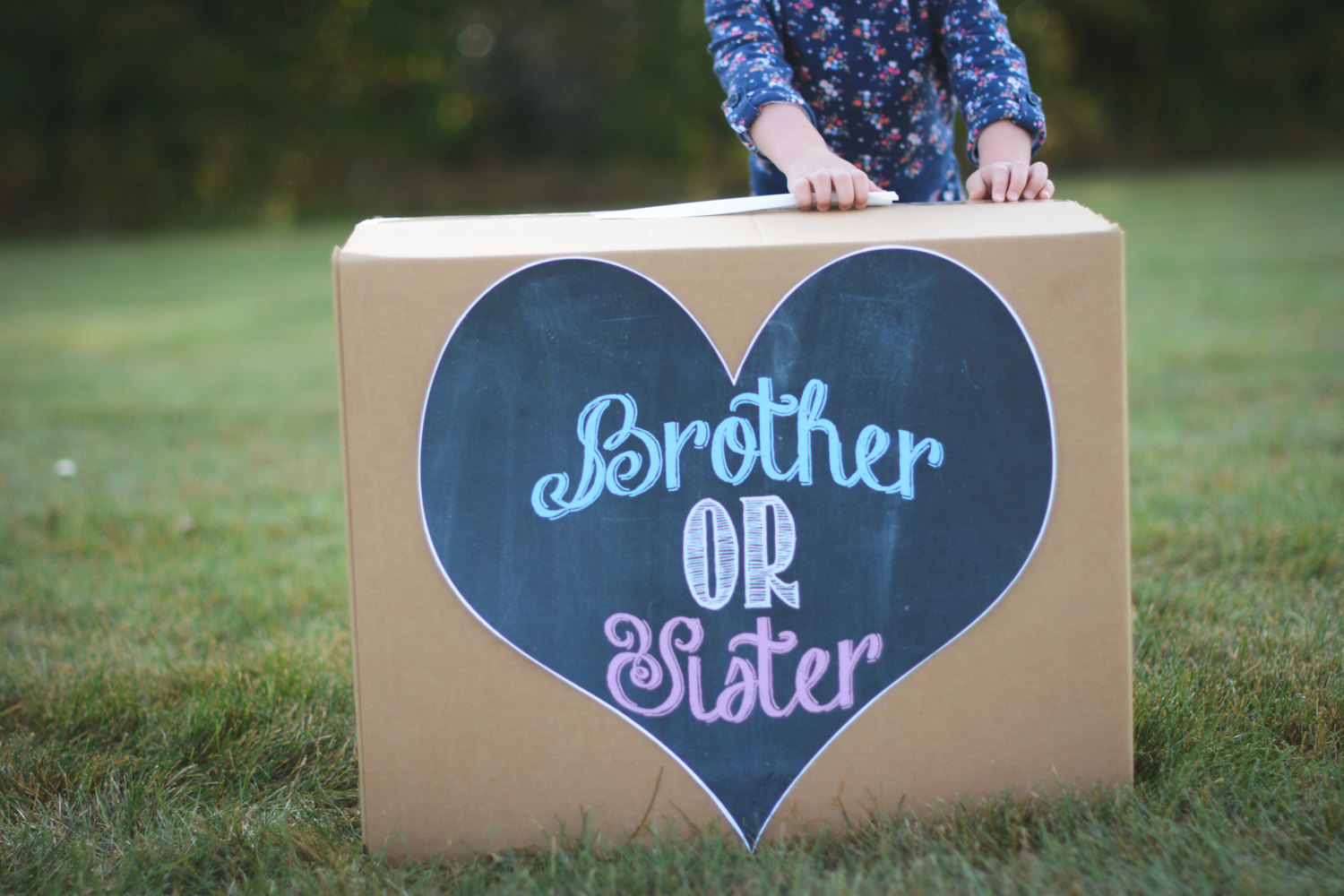 Top Gender Reveal Ideas of 2018
