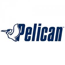 Pelican International Inc
