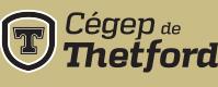 Cégep de Thetford