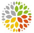 Hd logo icon