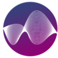 Logo wealth