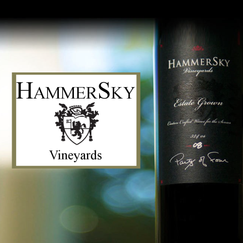 geo.to easy. fast. accurate. HammerSky Vineyards locations by you business logo