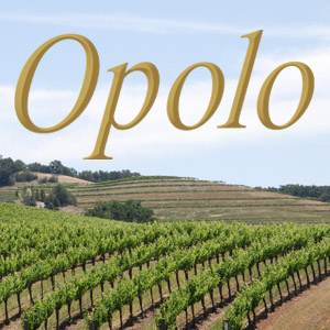 geo.to easy. fast. accurate. Opolo Vineyards locations by you business logo