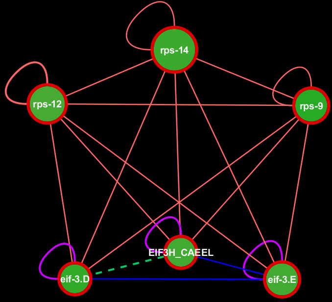 https://s3.amazonaws.com/gerontogenes/Cluster_of_ribosomal_components_c.png