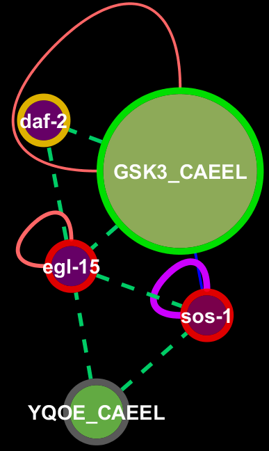 https://s3.amazonaws.com/gerontogenes/Phosphorylation_mediated_signal_transduction_c.png