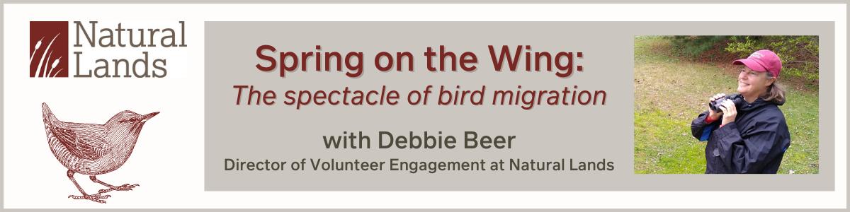Debbie Beer