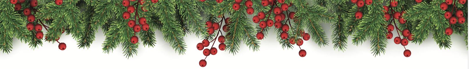 pine needles and berries