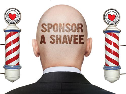 Sponsor a Shavee
