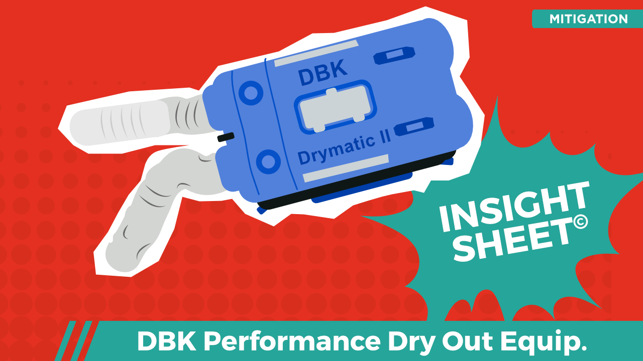 DBK Drymatic Dry Out Insight Sheet