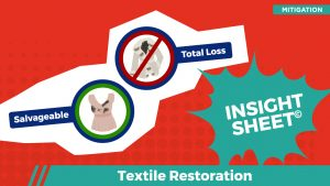 Actionable Insights Textile Restoration