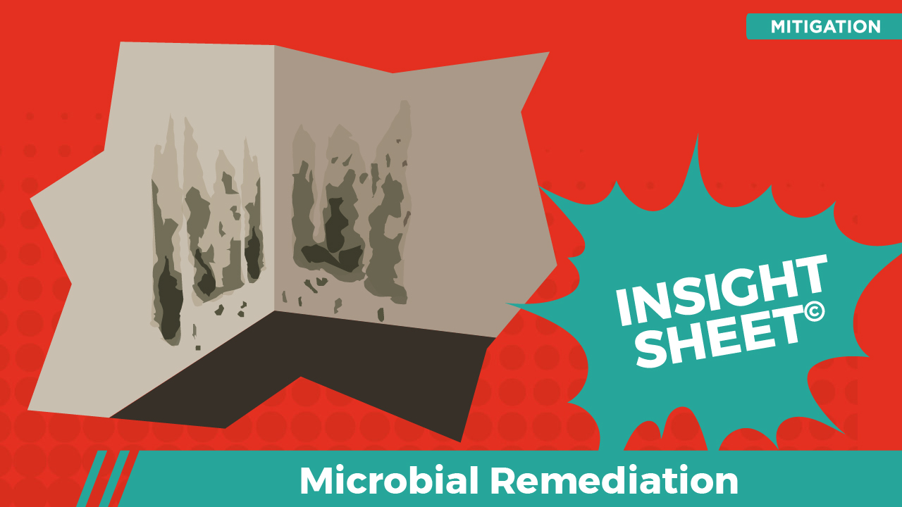 Actionable Insights Microbial Remediation