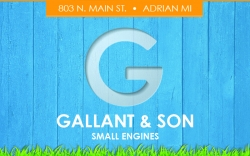Gallant & Son Small Engines