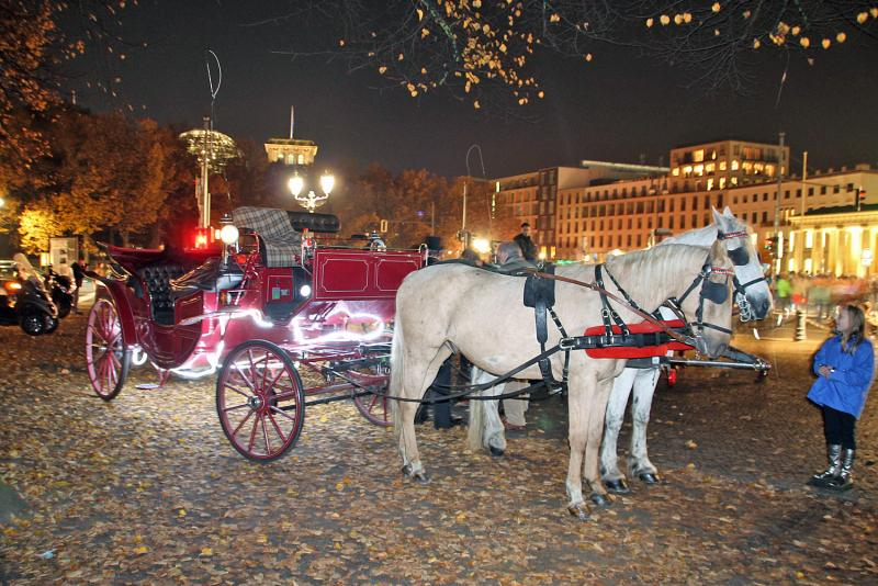 horse-carriage-night-tour