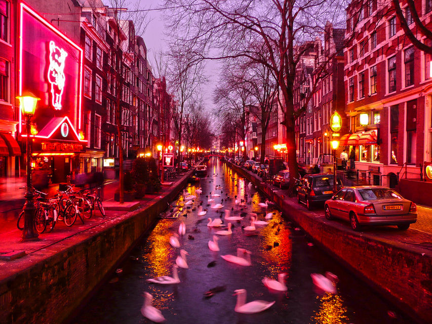 Top 5 Night Tours In Amsterdam