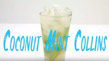 Coconut Mint Collins