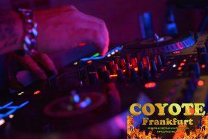 Coyote-Frankfurt