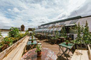 Culpeper Roof Garden