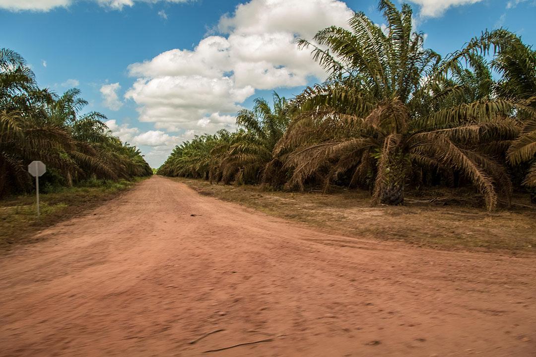 Environmental Rights Action/Friends of the Earth- Nigeria (ERAFOEN)