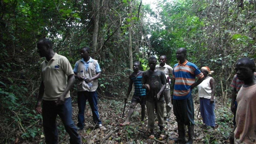 Working Group on Forest Certification Ghana