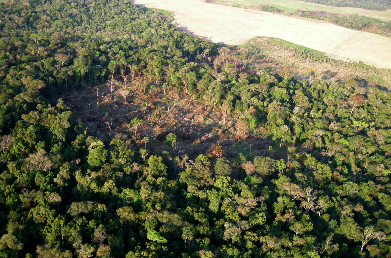 World Wildlife Fund - Paraguay