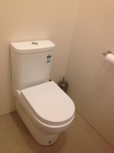 Chandlers Tiling Service - Complete Toilet reno
