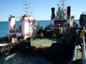 Support Utility type tugs