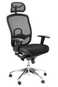 Visionary Deluxe Ergonomic Office Chairs