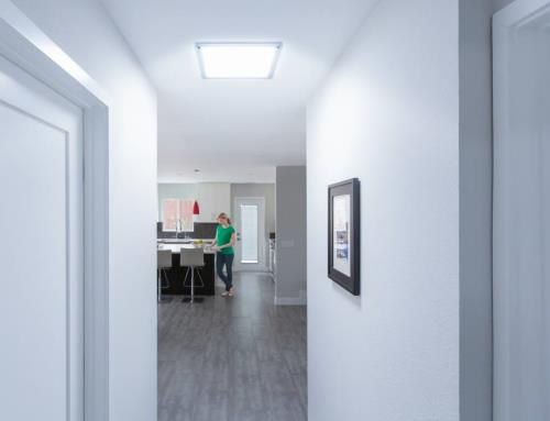 Create your spaces with natural light