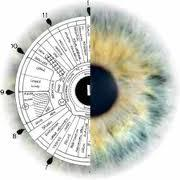 Iridiogy Diagnosing health issues through the eyes