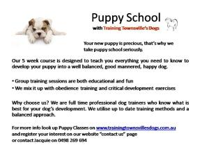 Group Puppy Classes