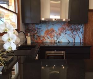 Printed acrylic splashback in kitchen