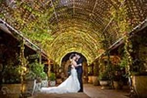 Sydney Wedding Video and Photo Packages