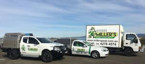 The vehicles of Miller's Pest Control, Port Kembla