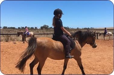 Group Riding Lessons