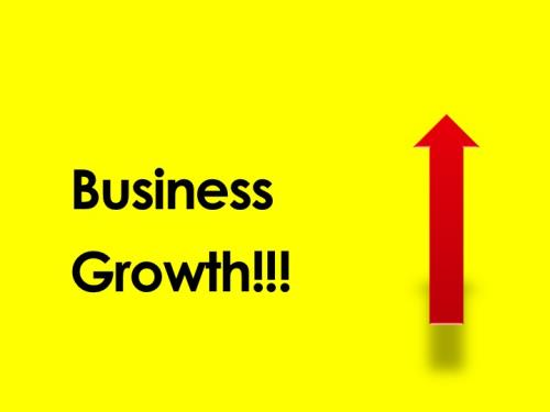 Business Growth Simplified