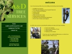 View More Information on A & D Tree Services Pty Ltd